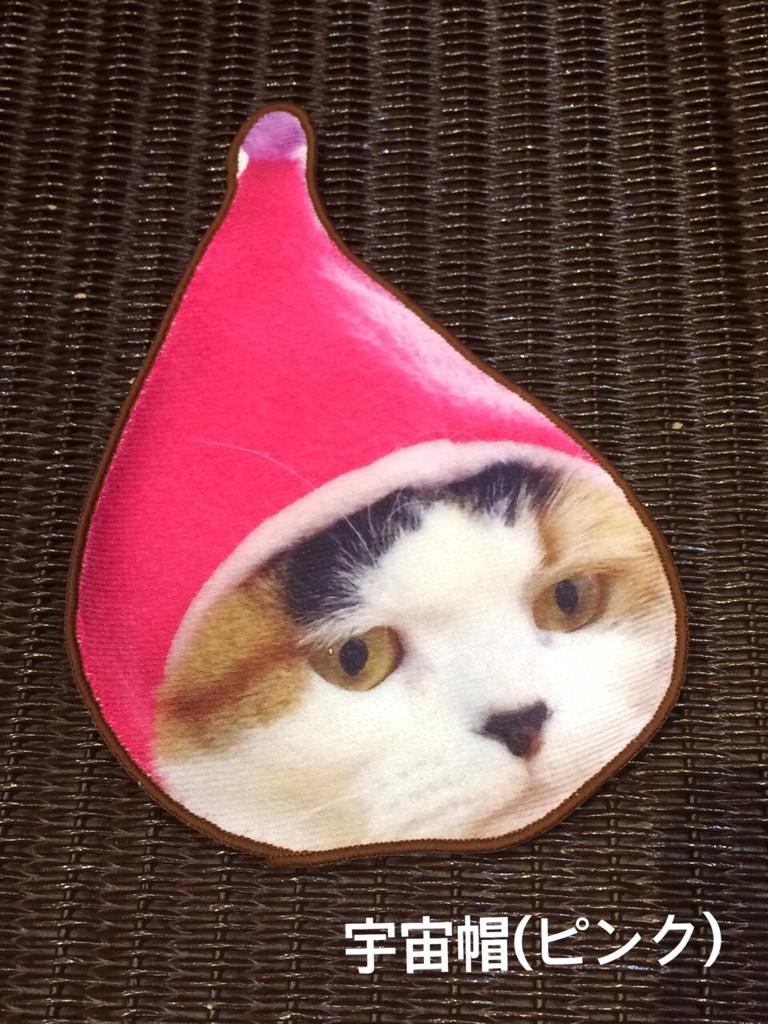 IMG 4665 【hug2nyan/ハグニャン】猫好きによる猫好きのための猫づくしハンドタオル♥
