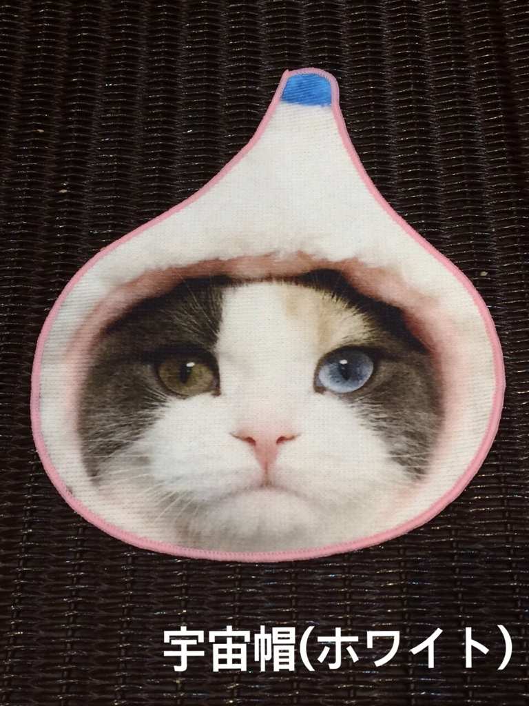 IMG 4666 【hug2nyan/ハグニャン】猫好きによる猫好きのための猫づくしハンドタオル♥