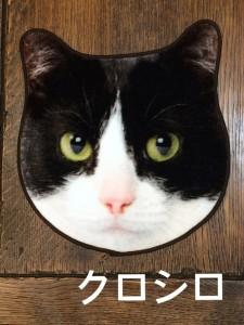 IMG 4935 225x300 『ネコ好きの方は大必見♡リアルネコタオルが再入荷致しました♪』